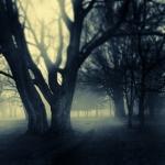 Walk to Witch's Hallow